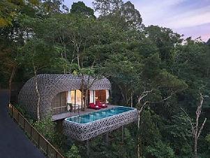 treehouse accom.jpeg