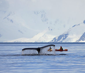 BLAST Antarctica Expedition