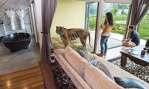 Jamala Wildlife Lodge Canberra.jpeg