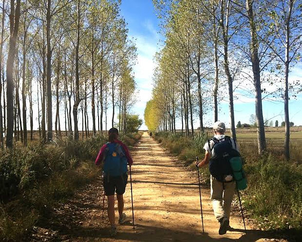 Camino Walking packages