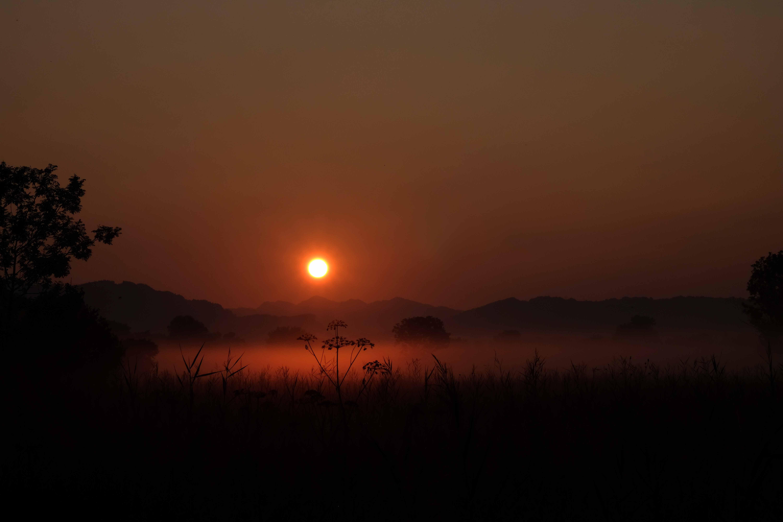 Sonnenaufgang im Ried III