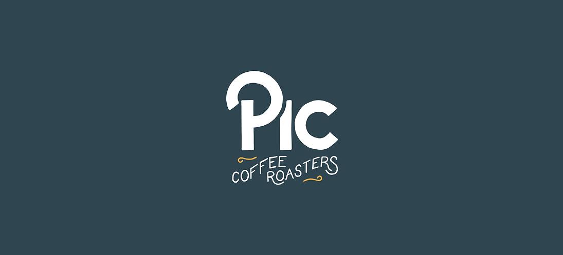 Pic Logo Strip.png