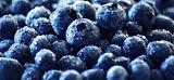 blueberry-3460423_1280_edited.jpg
