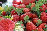 strawberry-1442647_1280.jpg