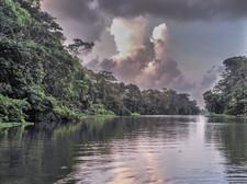 Subiendo el río en la selva
