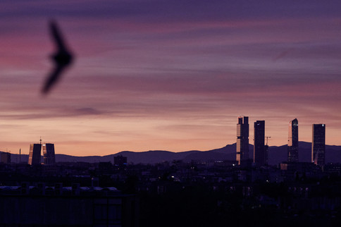 Madrid desde mi ventana 27
