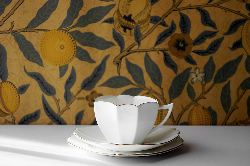 Rare Porcelain Teacup Trio / Shelley Queen Anne / 1910-30 ENGLAND