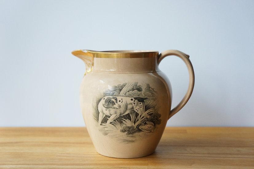 Rare Jug / Drabware / ENGLAND 1800-1830