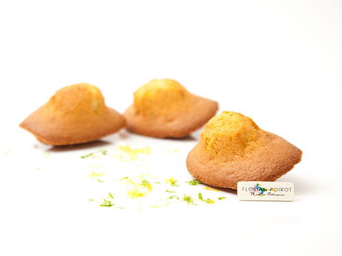 6 PLAIN MADELEINES COLLECT ONLY