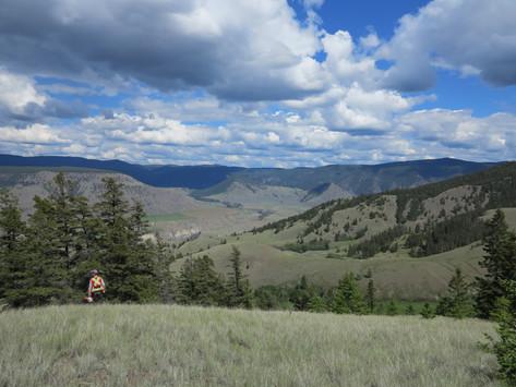 Native grasslands of interior BC