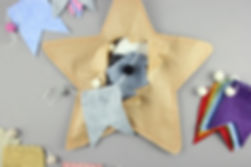 Bunting Star Collection.jpg