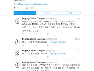 【Twitterアカウント設立】