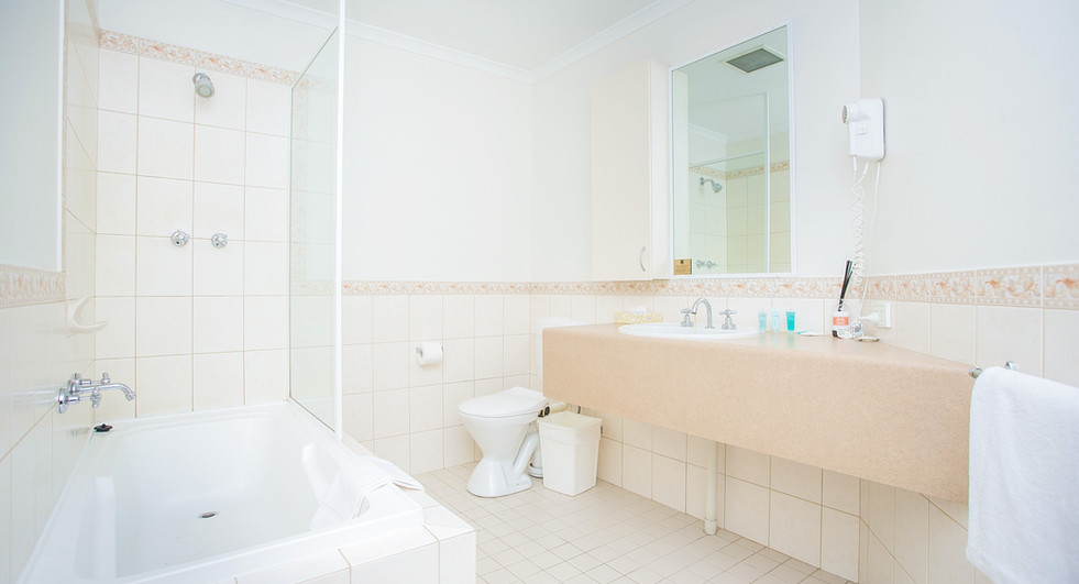 11. Bathroom One Bedroom Penthouse Apart