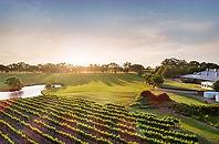 Swan Valley Wineries.jpg