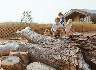 blustem_nature_school_preschool_champaign_urbanan_central_illinois_wright_photogaphs_0071.