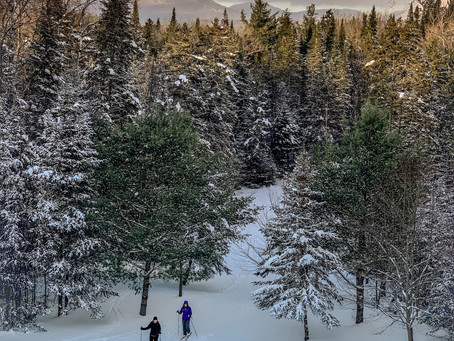 Managing cross-country skiing under climate change: Austria and Finland (2011)