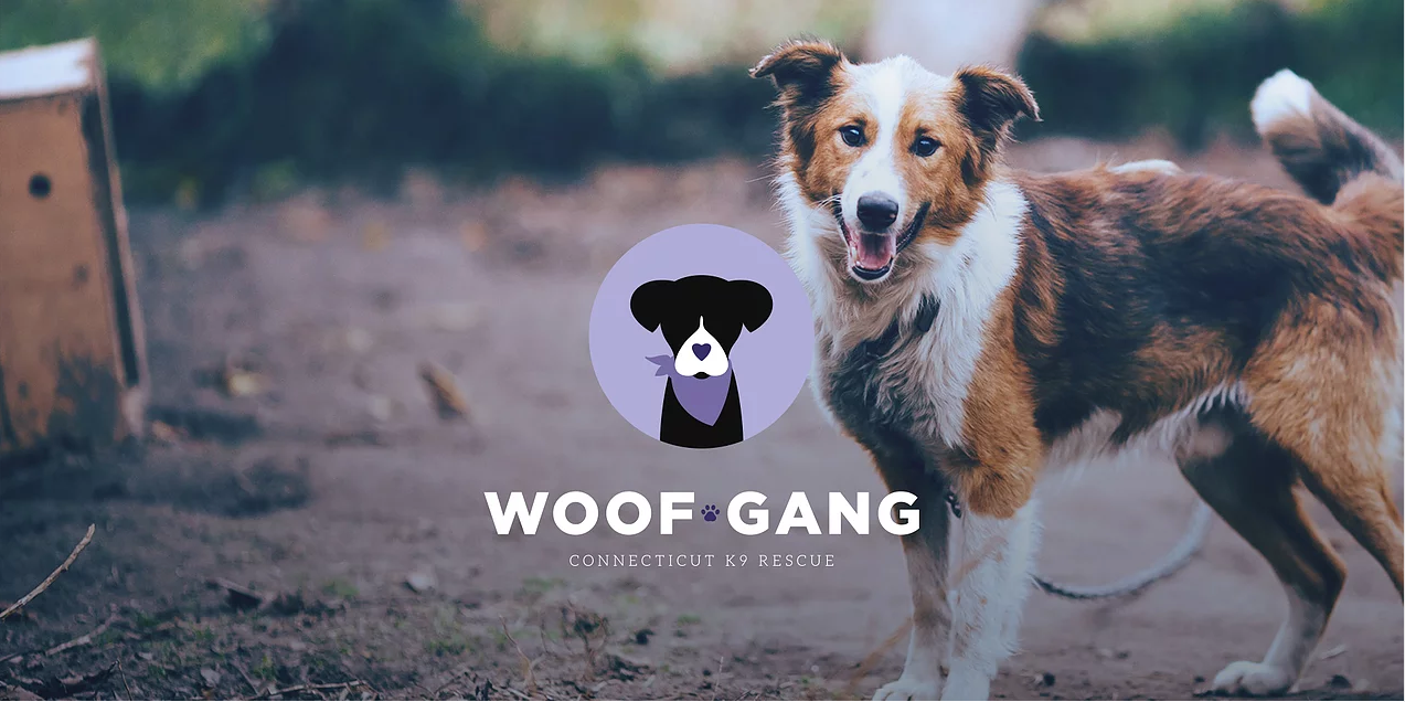 The Woof Gang - Connecticut Dog Rescue