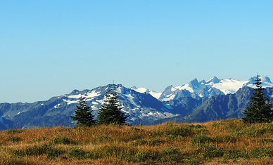 scenery-at-olympic-national-park-washing