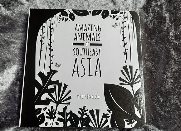 Southeast Asia Baby Board Book