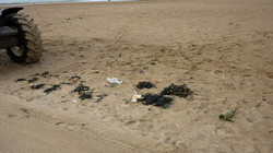 d'hooghe beachcleaners - Matador