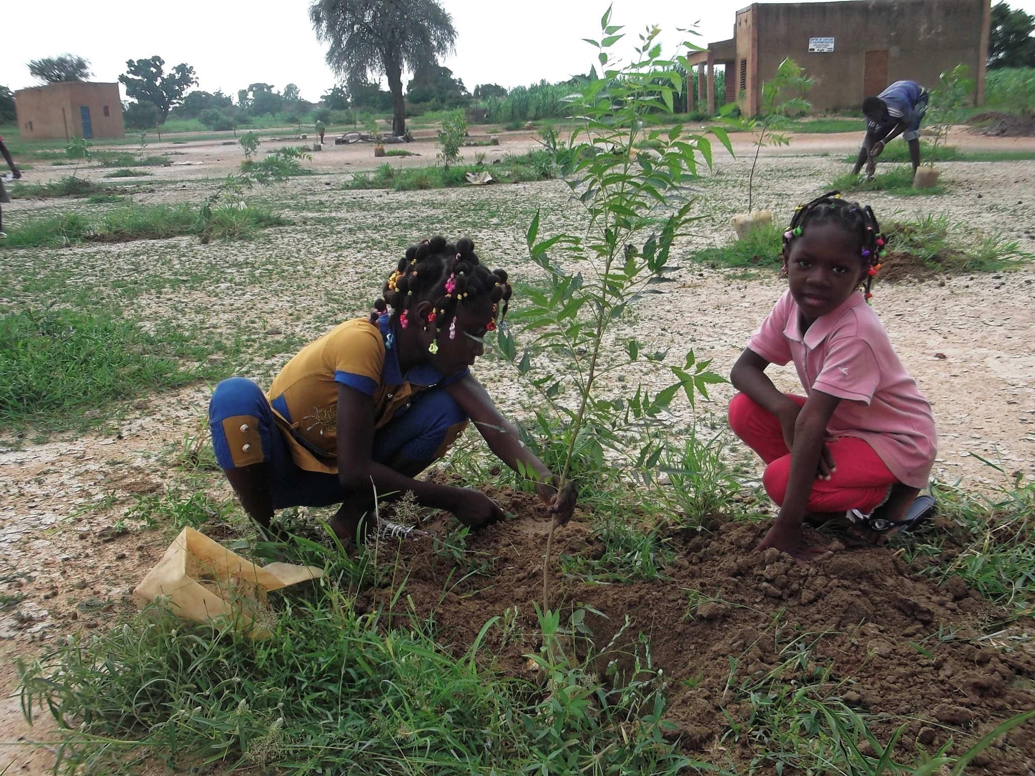 Plantations au parc humanitaire