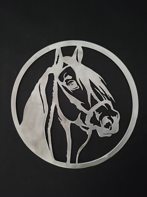 Cheval cercle