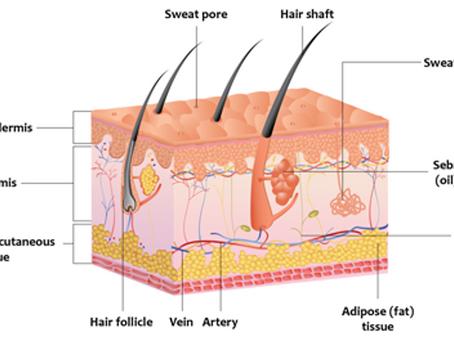 Simple Skin Science