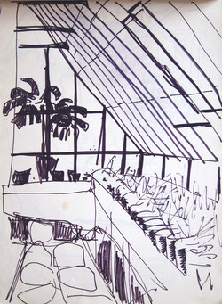 The green house, 1972, ink, 21X29 cm