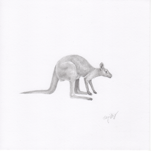 """Wallaby"" Print (10"" x 10"")"