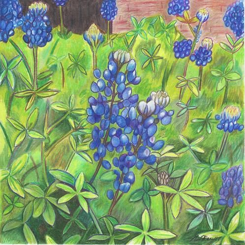"""""""Bluebonnet Garden"""" Print (10"""" x 10"""")"""