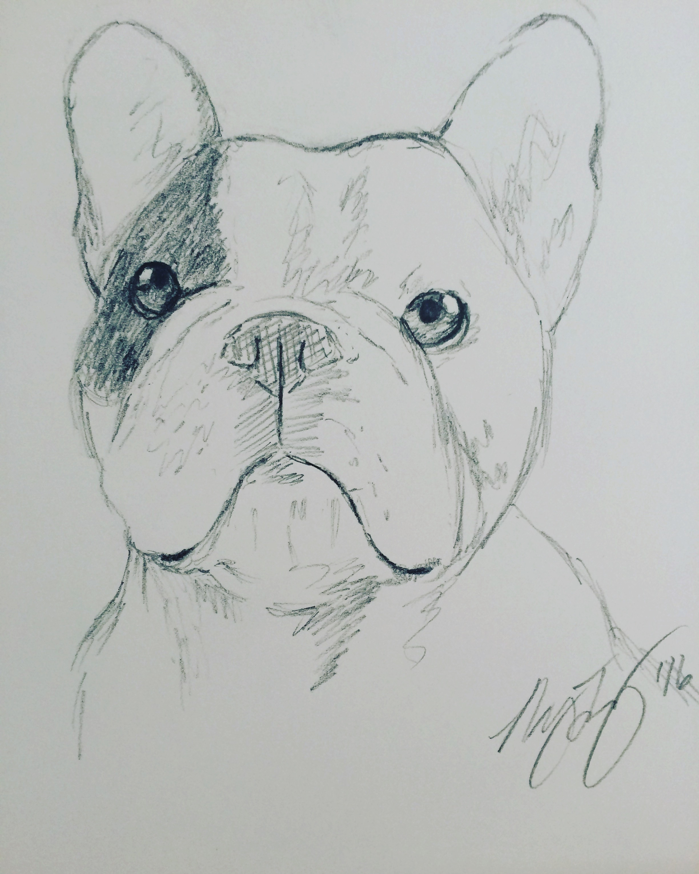 """Manny the Frenchie"""