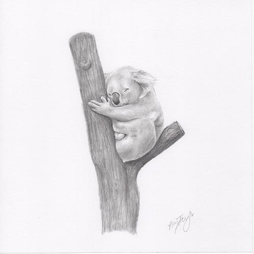 """""""Koala"""" Print (10"""" x 10"""")"""
