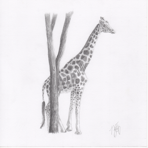 """""""Giraffe"""" Print (10"""" x 10"""")"""