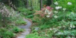 nativelandscape7.jpg