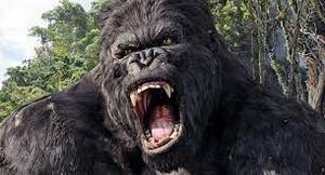 Black X Beast