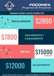 Subsidios   Nuevos Valores