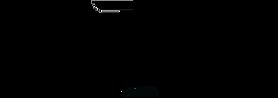 Compass Team Logo.png