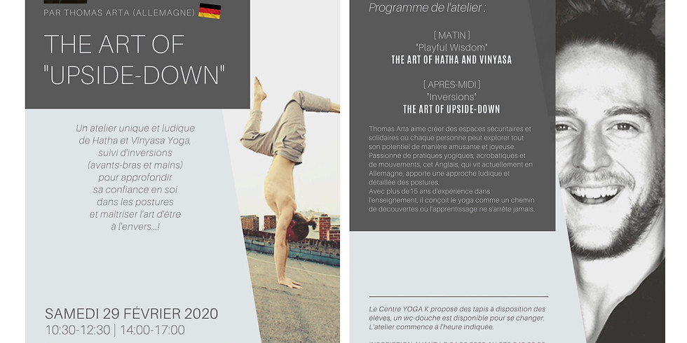 The Art of UPSIDE-DOWN