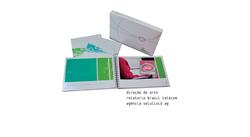 Relatório Brasil Telecom