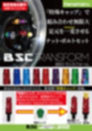 BSC1.jpg
