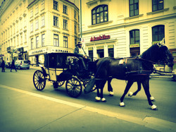 VIENNE 2014