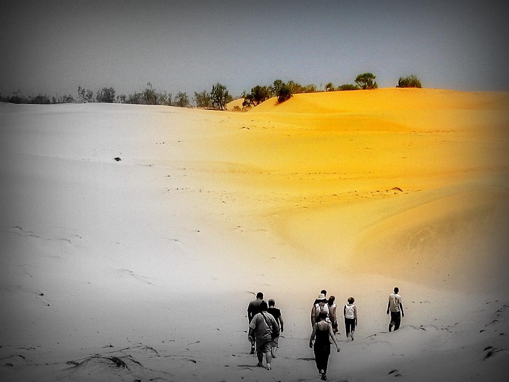 SENEGAL 2006