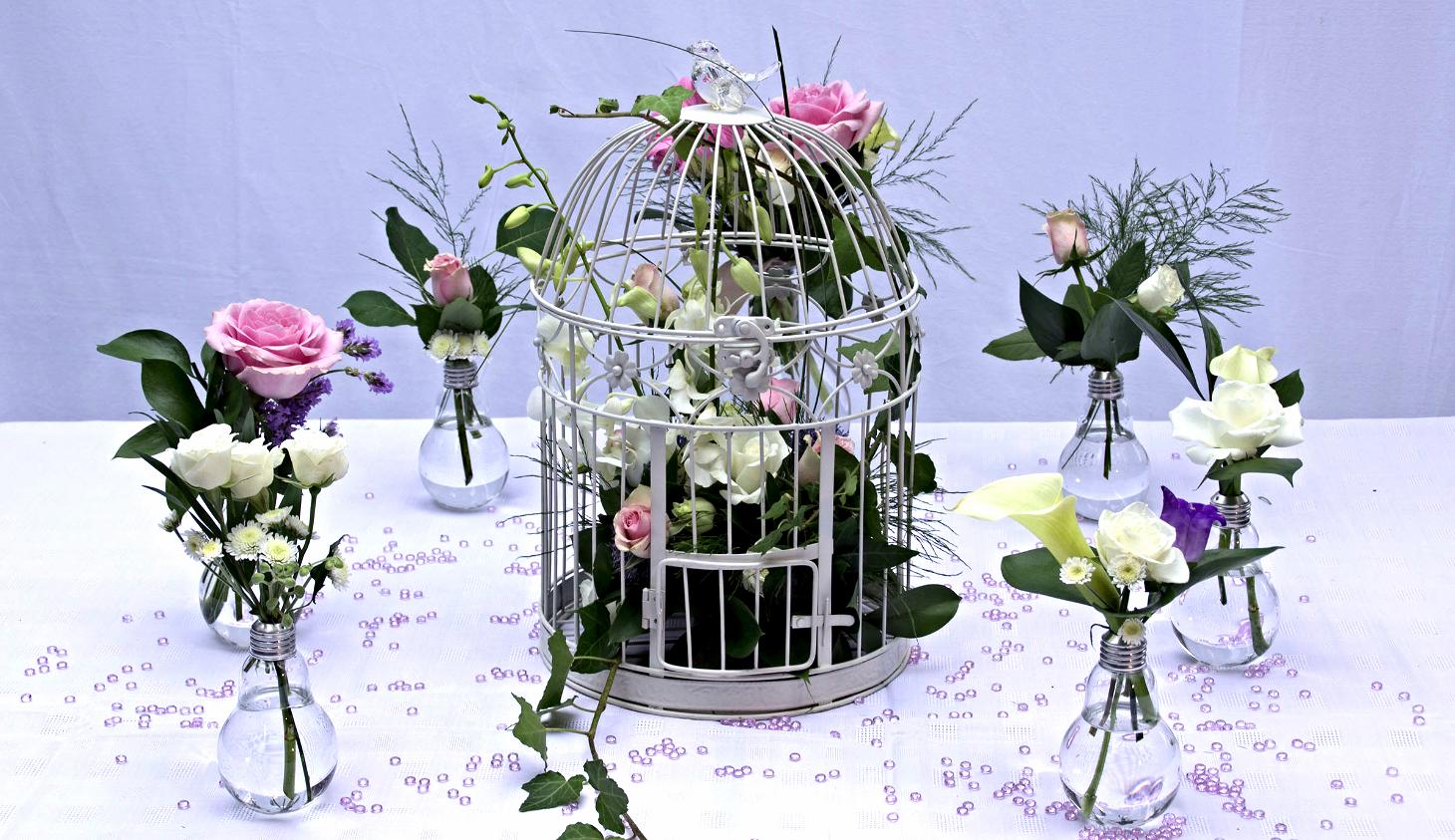 Bird cage & bulb display