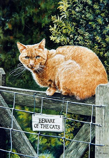 Thomas - Beware of the Cats