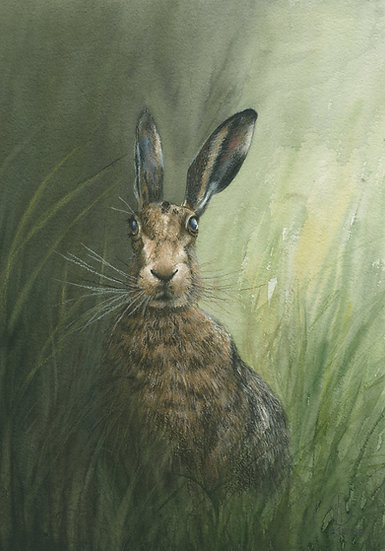 Hare-On Guard