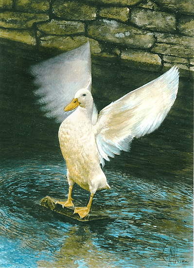 Angel Duck.