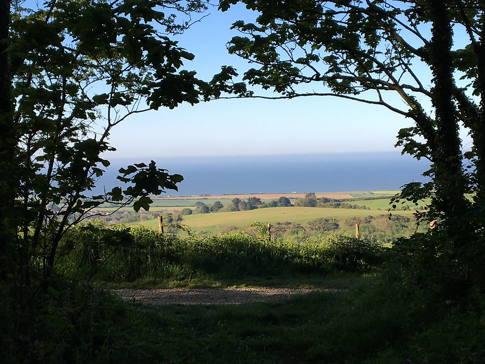 Gorgeous sunny view from Brighstone Down on the southwest side of the Island.