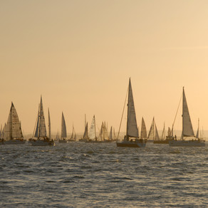 10 top tips for racing in Round the Island Race - from Firefly House, luxury accommodation in Cowes