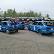 Blue minis and hornets 2010