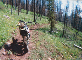 Red Cub Trail motorcycle.jpg